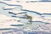 В Арктике наступила новая эра