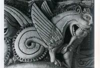 Мифологические Грифоны - летающие монстры