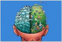 Зачем одной голове два полушария?
