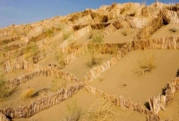Ловушки для песка