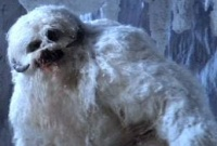 Встреча воочию со снежным человеком