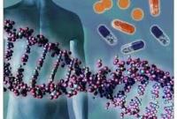 Геном человека - новые открытия