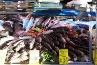 Мировые коммерческие запасы рыбы могут сократиться на 90% за 35 лет