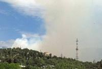 Пожар в Крыму растет и покрывает Ялту дымом