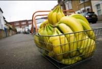 5 полезнейших экзотических фруктов