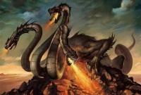Нелегкая жизнь дракона