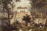 Пророчество майя о конце света оказалось уловкой древних политиков