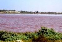 Озеро цвета фламинго
